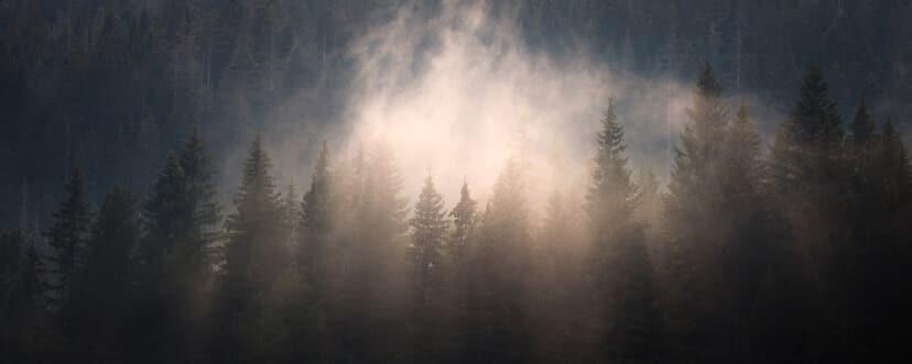 Die Rauhnächte – Verbindung Von Traum Und Wirklichkeit